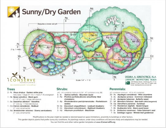 Native plant landscaping ideas for Native plant garden designs